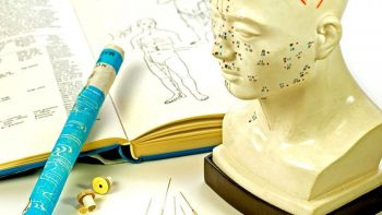 5 Reasons Why Students Need Access To Acupuncture EHR While in School
